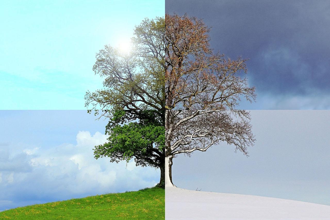 gastoninaui_seasons-of-the-year-1127760_1280.jpg