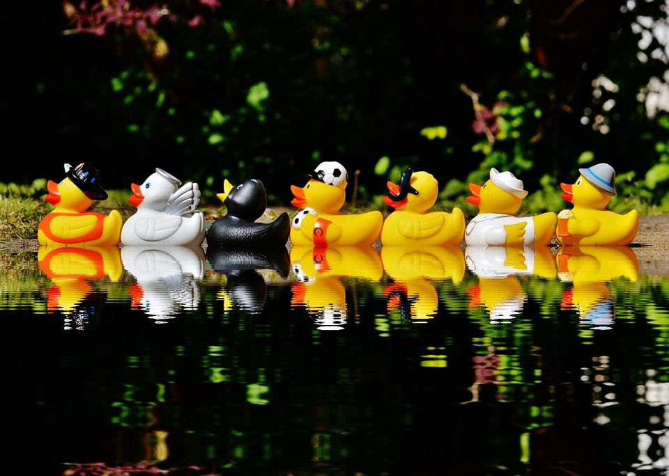 rubber-ducks-1408308_960_720.jpg