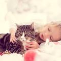 Elfér-e otthon a macska és a gyerek?