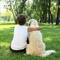 Kutyával lehet igazán boldog a gyermekkor!