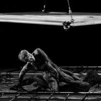 A nap fotója - Frenák ketrecharca