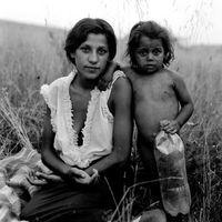 A nagy voks esete a roma élethelyzet megoldásával