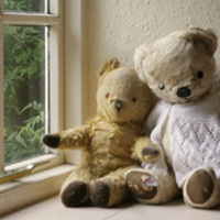 Az MTI sarki medvéje