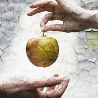 Tényleg alma volt a jó és a rossz tudásának fájának gyümölcse?