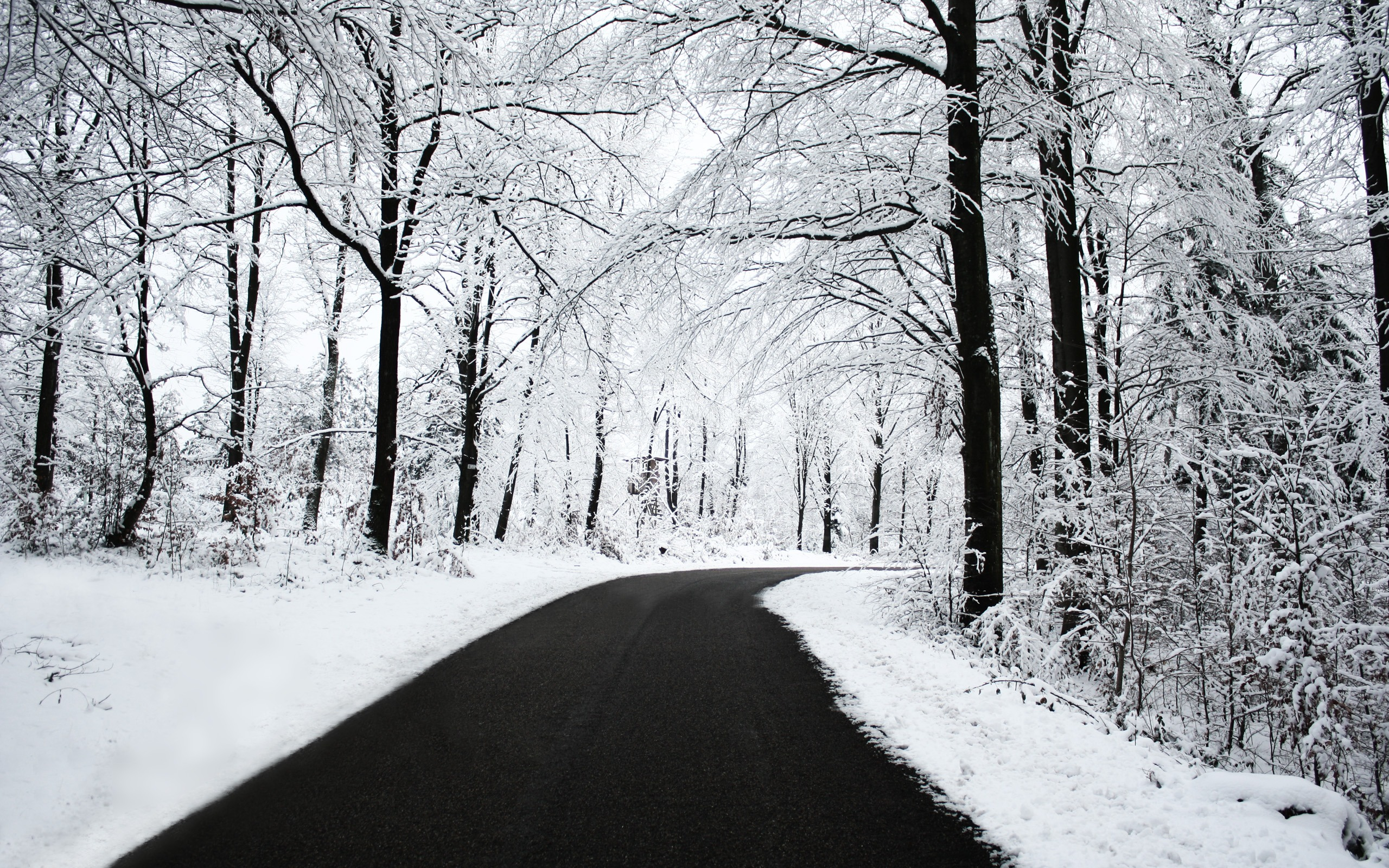 winter-road.jpg