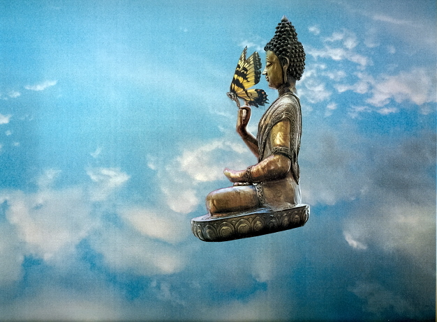 Buddha and the butterfly fly.jpg