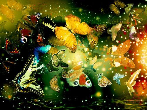 Butterflies_desktop_backgrounds_large.jpg