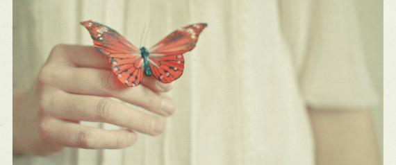 n-finger-butterfly-large570.jpg