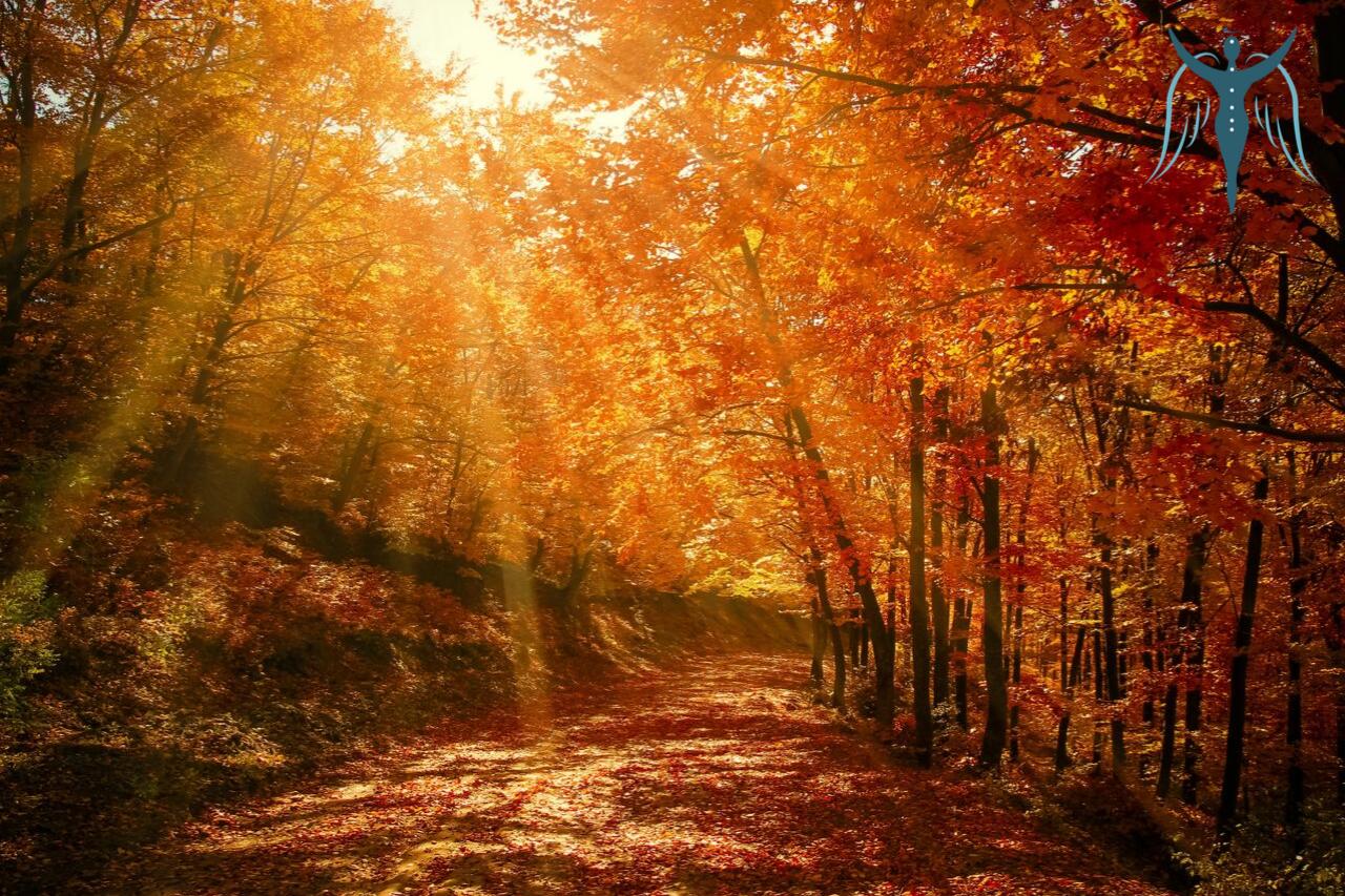 Őszi napéjegyenlőség
