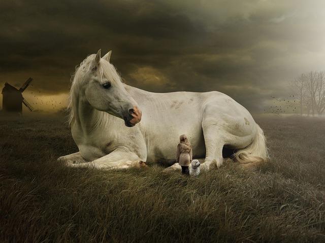 Úgy élsz, mint az állatok! A kilátástalanságból egy teljes életbe!