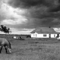 Élet egy tanyán.... amikor a lélek hazatalál....