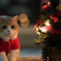 Békés Karácsony kezdet 1. rész