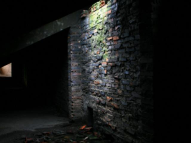 omladozó falak