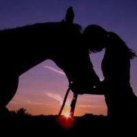 Mert az élet olyan, mint a lovaglás.... csoda minden pillanata