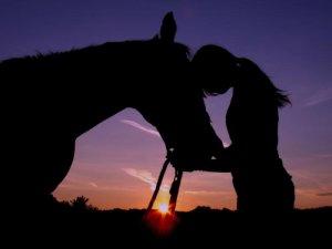lovas élet