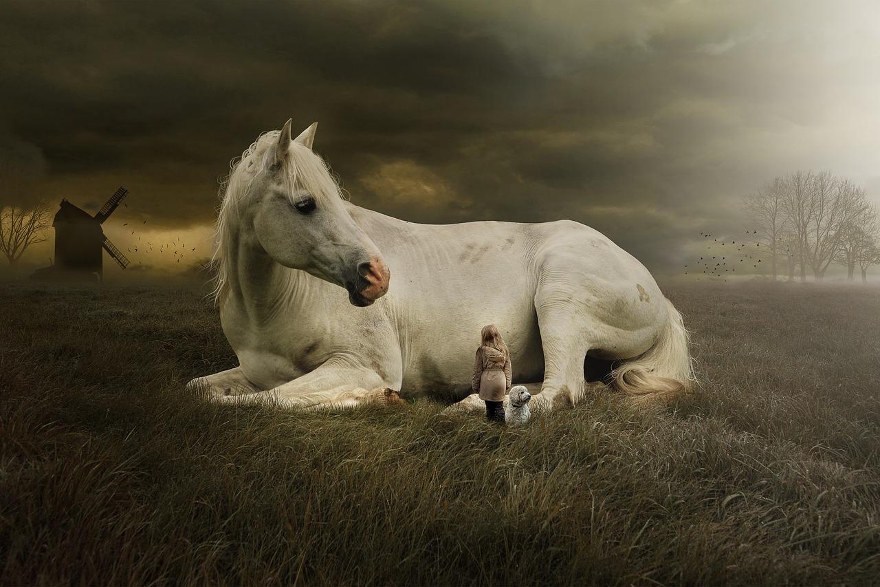 horse-3323441_1280.jpg