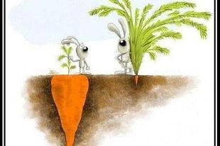 A dolgok nem mindig azok, aminek látszanak (tanmese)