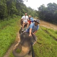 Tigrisek, elefántok, pókok és a rizsföldek nyomában (Chiang Mai, Pai)