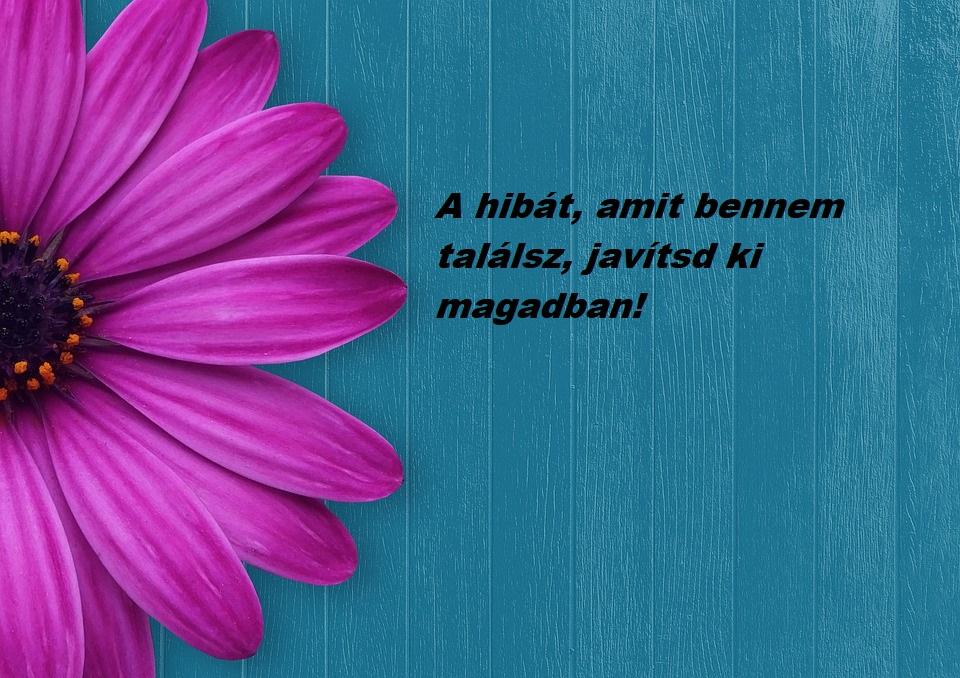 a_hibat.jpg