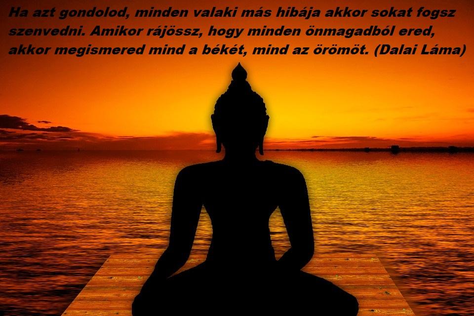 felelosseg_dalai_lama.jpg