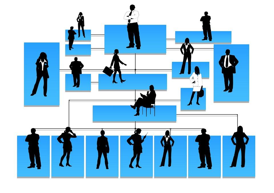 hierarchia.jpg