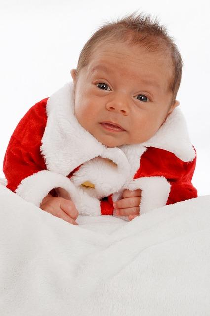 adorable-218138_640.jpg