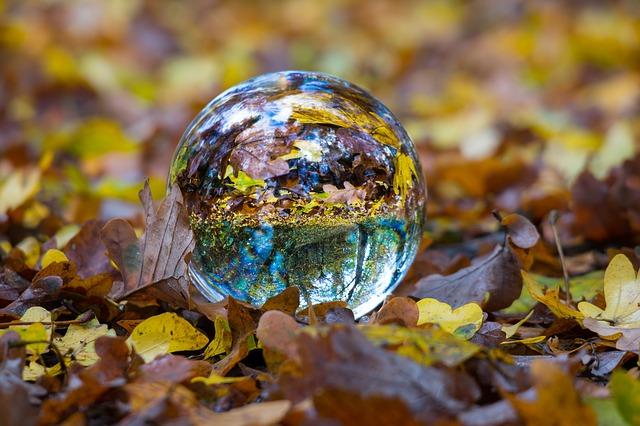 autumn-1809770_640.jpg
