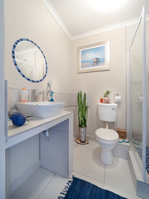 bathroom-3501553_640.jpg