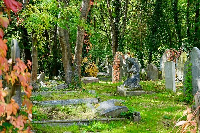 cemetery-2796619_640.jpg