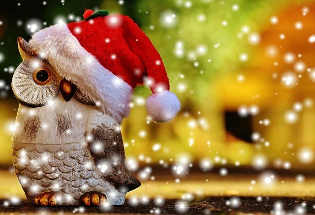 christmas-1906639_640.jpg