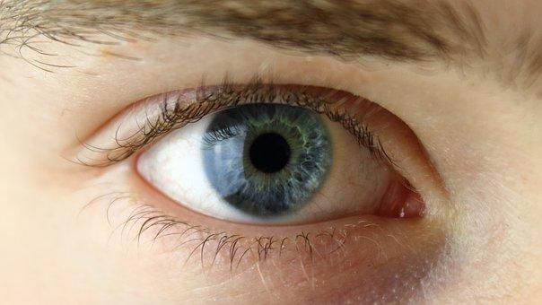 eye-2154384_340.jpg
