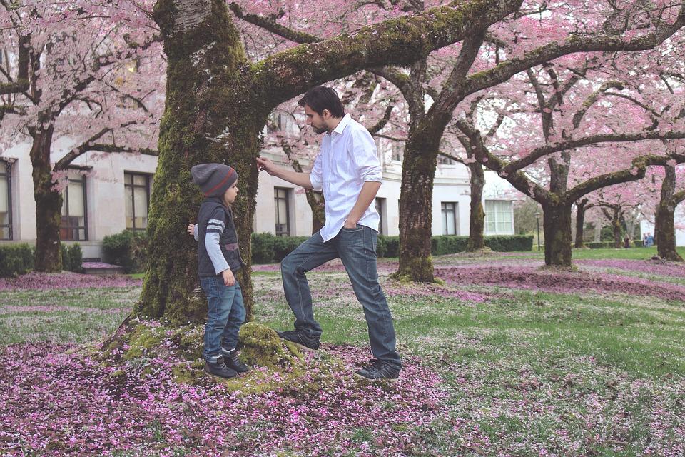 father-2212094_960_720.jpg