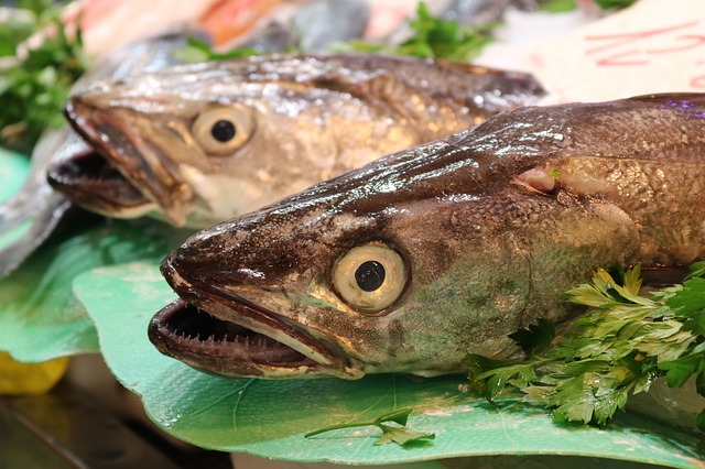 fish-market-2732655_640.jpg