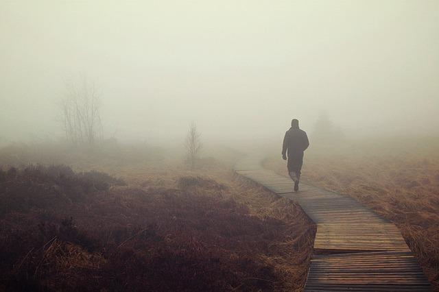 fog-1258892_640.jpg