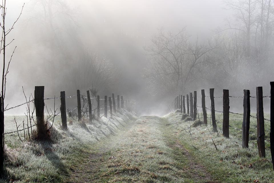 fog-4783804_960_720.jpg
