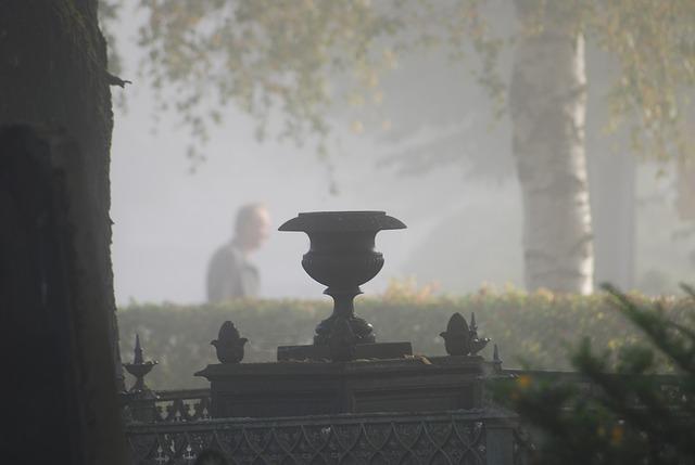 fog-536695_640.jpg
