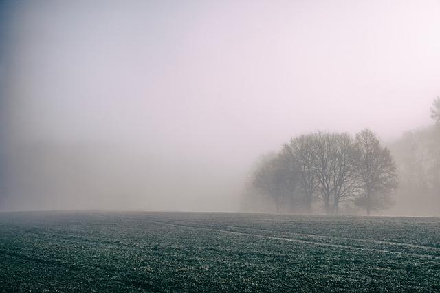 fog-828779_640.jpg