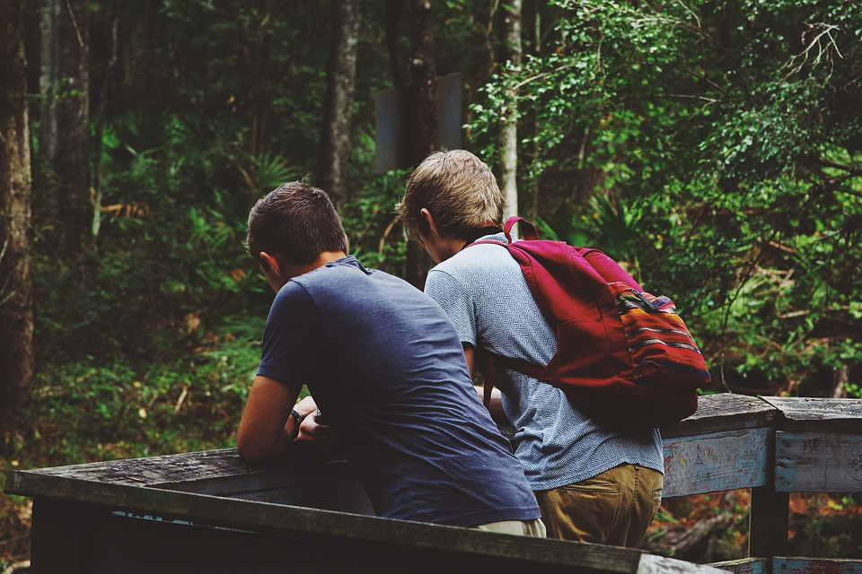 friendship-1081843_960_720.jpg