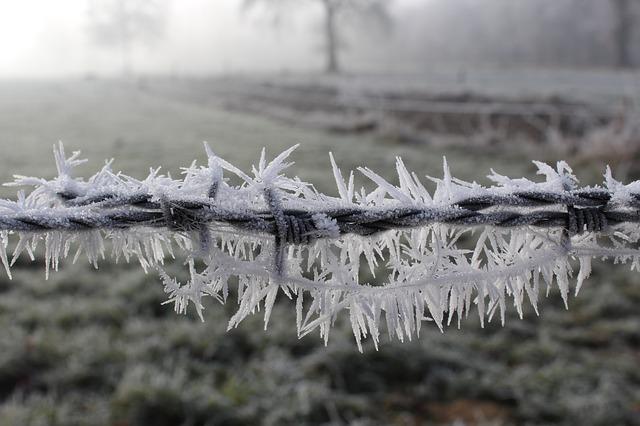 frost-1881723_640.jpg
