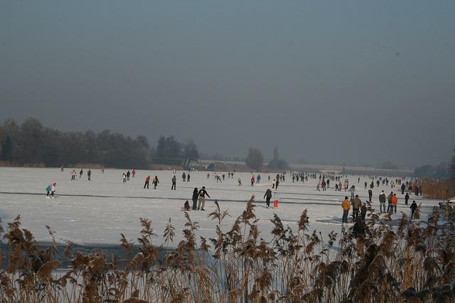 frost-202686_640.jpg