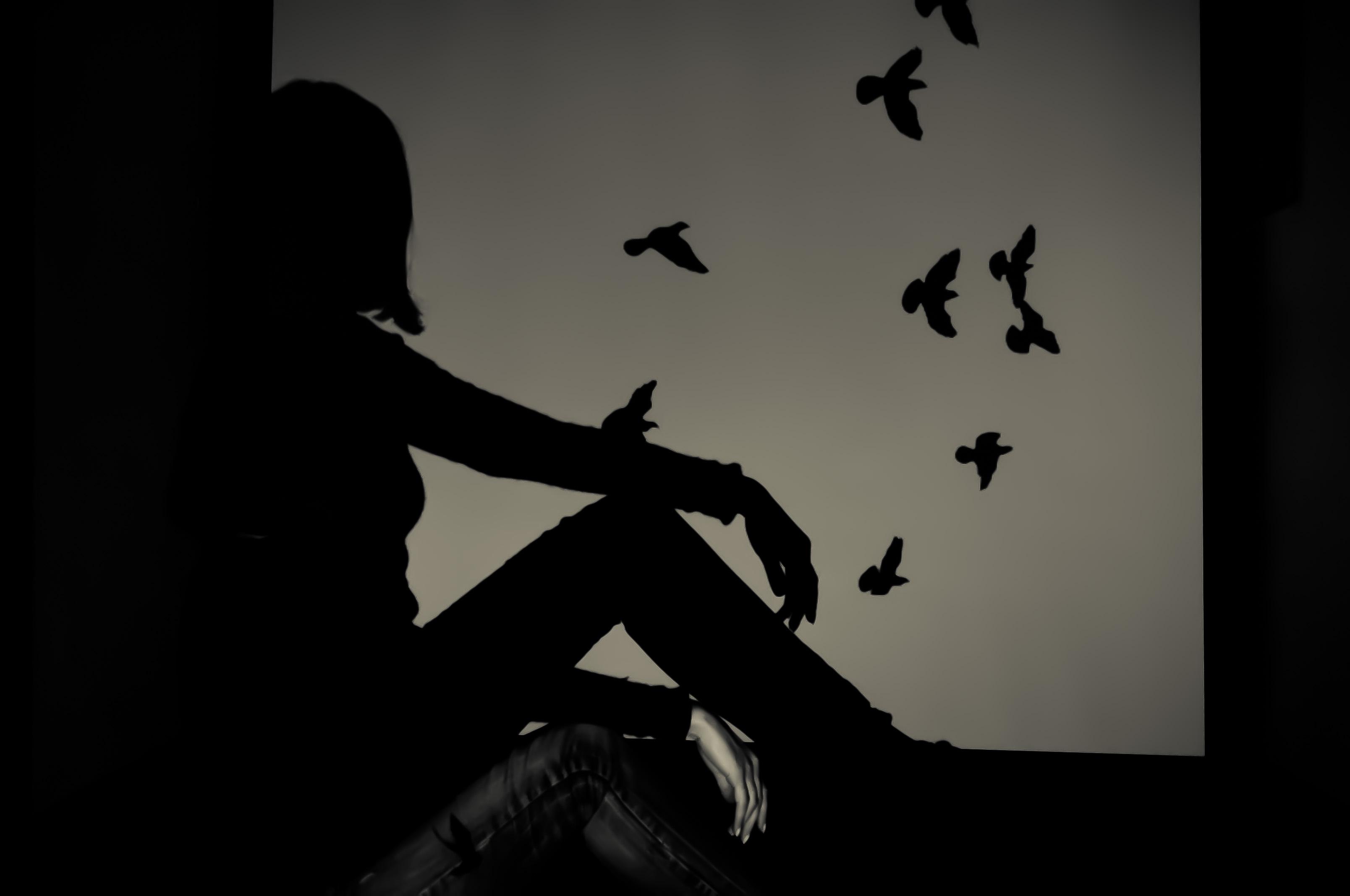 girl_birds_shadow_1.jpeg