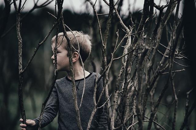 kid-2605773_640.jpg