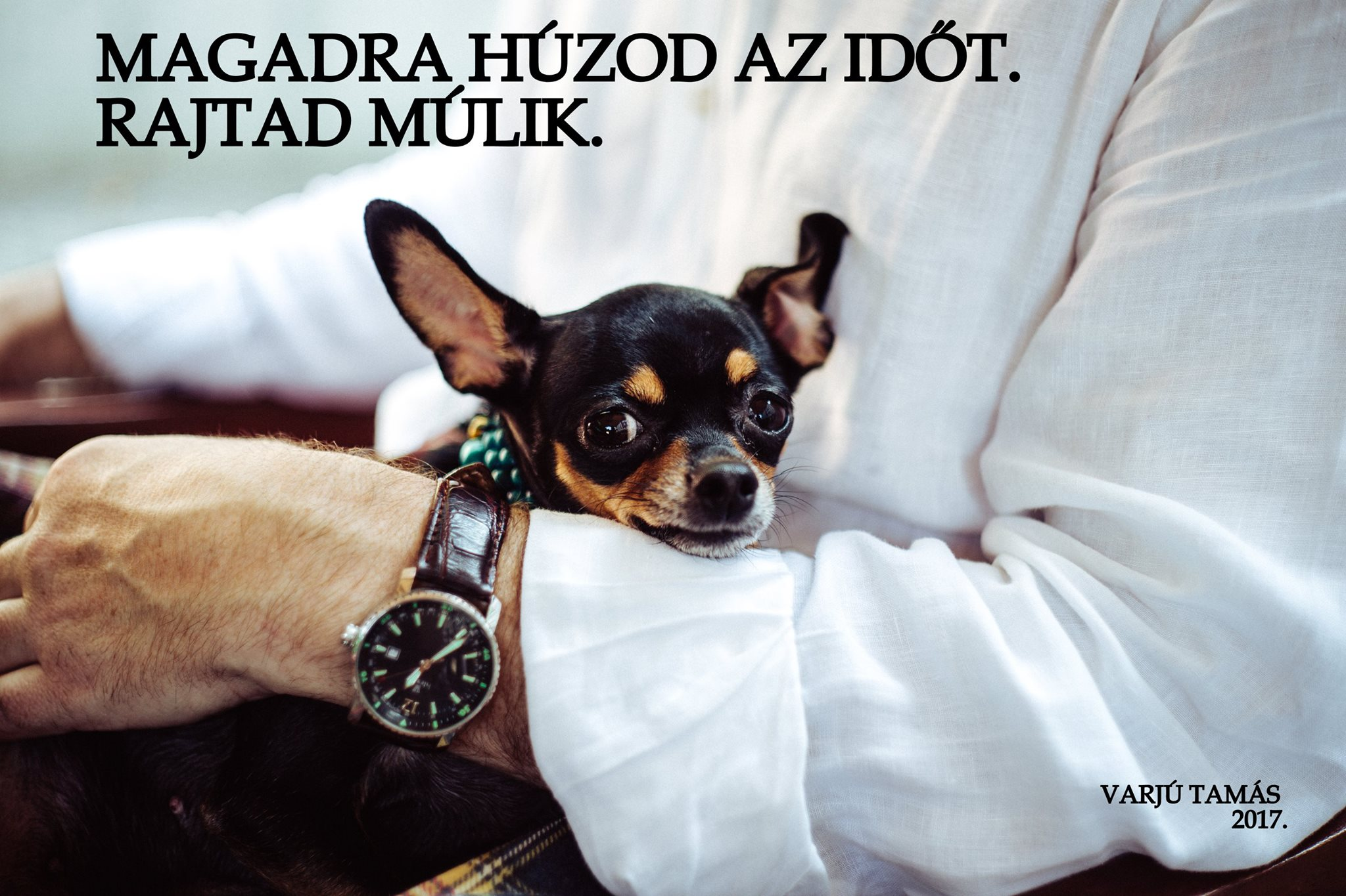 magadra_huzod_az_idot_rajtad_mulik.jpg