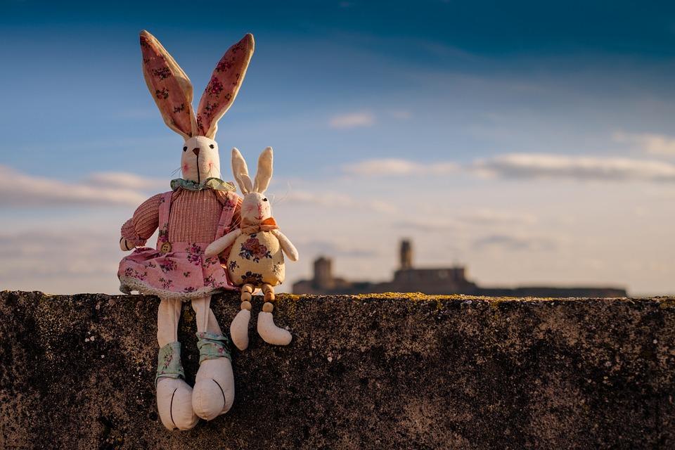 rabbit-1158594_960_720.jpg