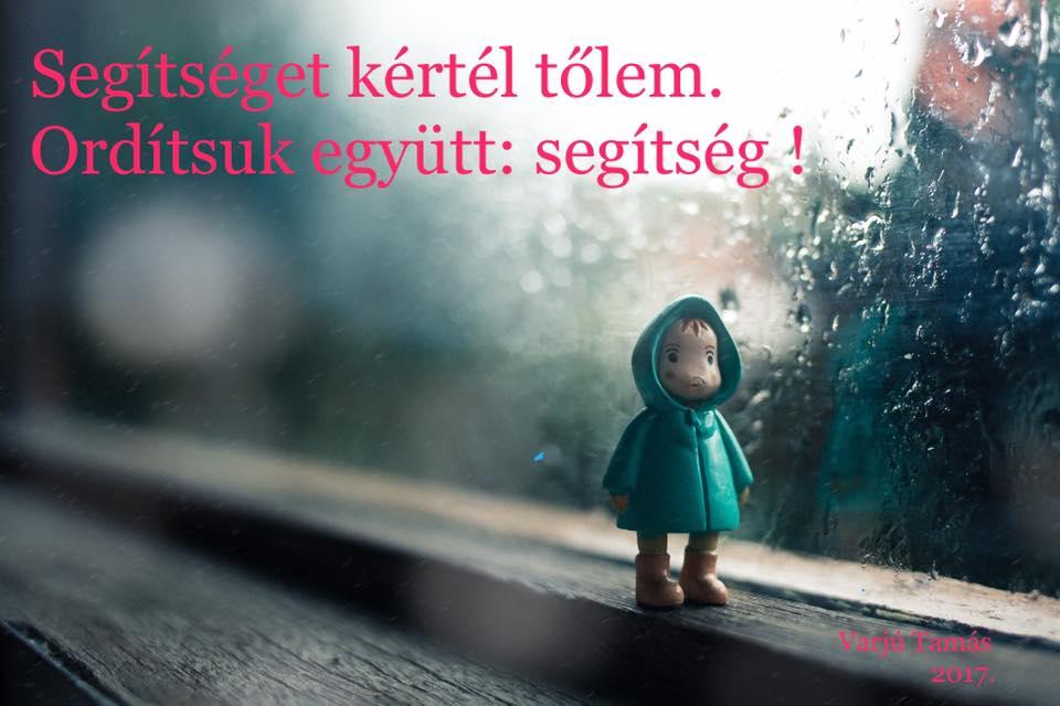 segitseget_kertel_tolem_orditsuk_egyutt_egitseg.jpg