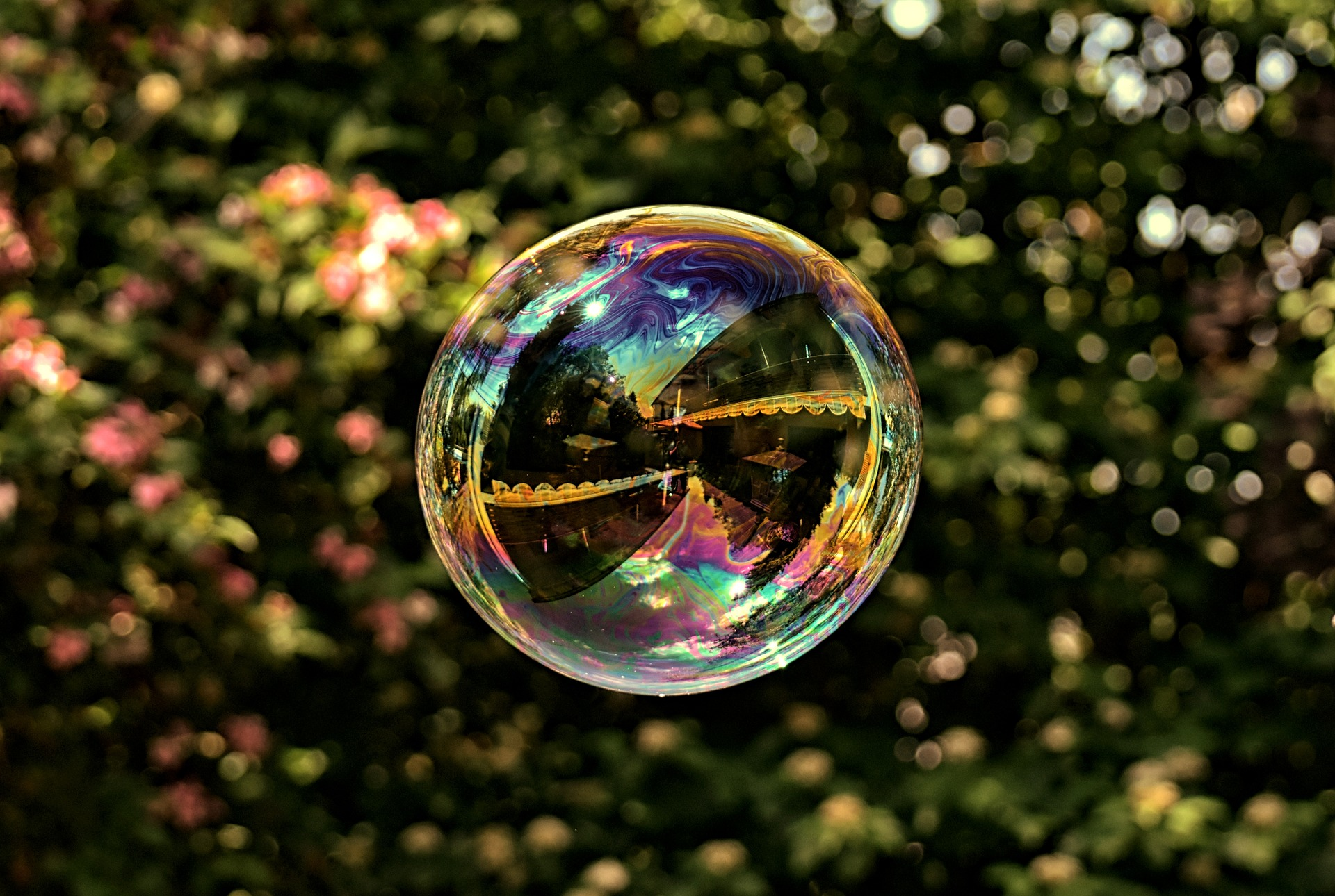 soap-bubble-3576085_1920.jpg