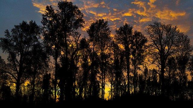 sunset-4848279_640.jpg