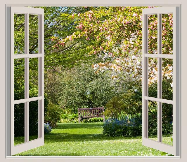 window_landscape.jpg
