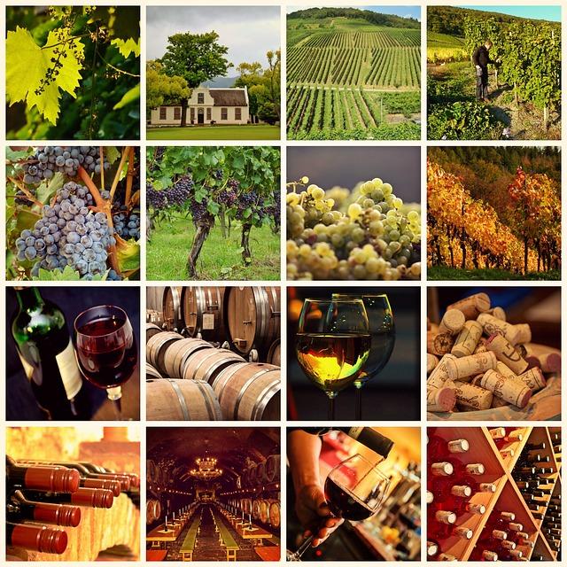 wine-1597376_640.jpg