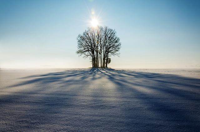 winter-1965902_640.jpg